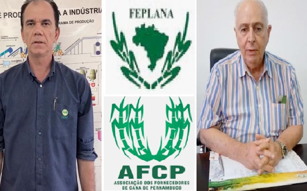 Feplana apoia indicação de Teresa Cristina como ministra da Agricultura