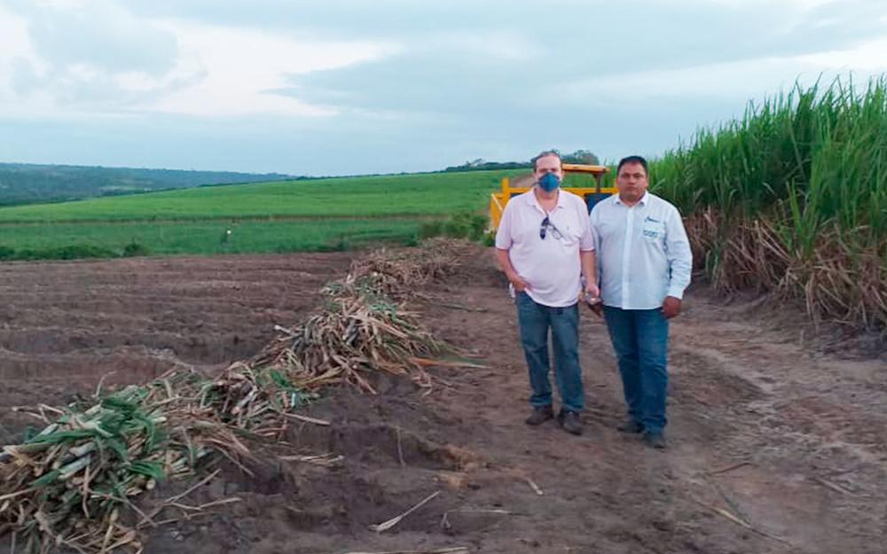Paraíba ganha dois campos de melhoramento genético da Ridesa para multiplicação de clones de cana-de-açúcar com apoio da Asplan